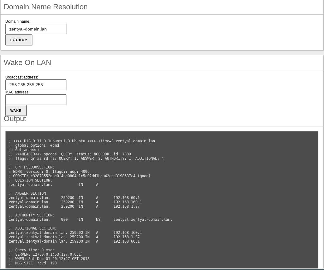 Domain Name System (DNS) — Zentyal 6 0 Documentation